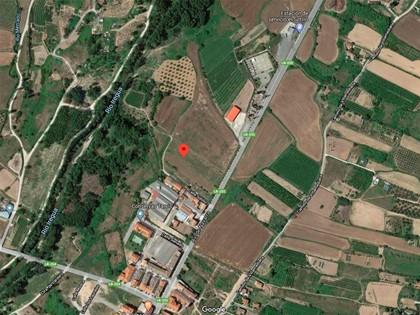 25% Solar en Paraje Portillera de Alberite, (La Rioja). FR 5528 del RP de Logroño nº2