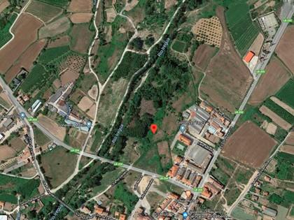 25% Rústica en Paraje Portillera de Alberite, (La Rioja). FR 3771 del RP de Logroño nº2