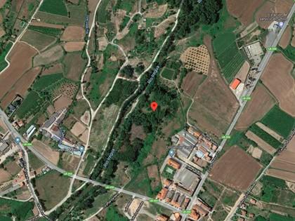 25% Rústica en Paraje Portillera de Alberite, (La Rioja). FR 3767 del RP de Logroño nº2