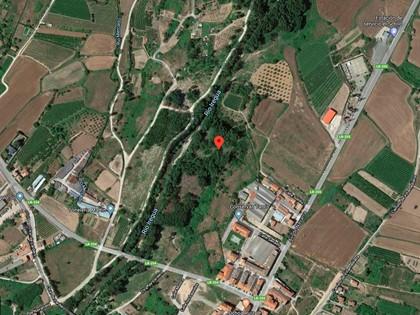 25% Solar en Paraje Portillera de Alberite, (La Rioja). FR 5752 del RP de Logroño nº2