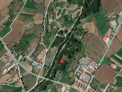 25% Rústica en Paraje Portillera de Alberite, (La Rioja). FR 5518 del RP de Logroño nº2