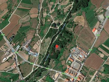 25% Solar en Paraje Portillera de Alberite, (La Rioja). FR 5631 del RP de Logroño nº2