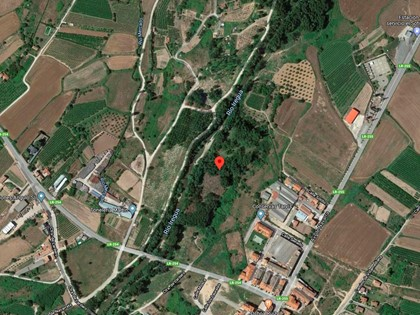 50% Rústica en Paraje Portillera de Alberite, (La Rioja). FR 5316 del RP de Logroño nº2