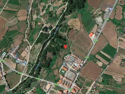 25% Solar en Paraje Portillera de Alberite, (La Rioja). FR 5736 del RP de Logroño nº2