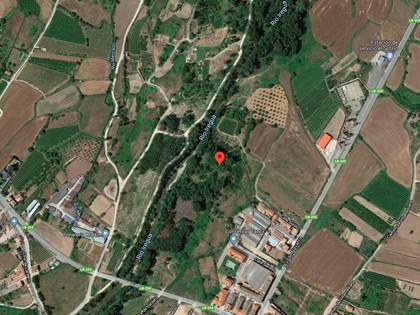 25% Rústica en Paraje Portillera de Alberite, (La Rioja). FR 5861 del RP de Logroño nº2