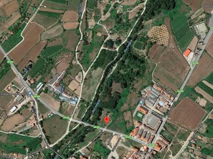 Rústica partida Portillera de Alberite, (La Rioja). RF 5645 del RP Logroño nº2