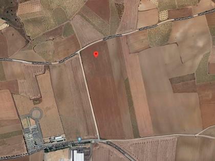 Rústica tierra secano en Noblejas (Toledo). FR 14251 RP Ocaña