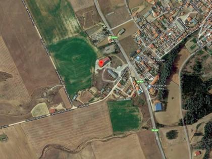 Rústica parcela 5055 polígono 1, con construcciones en Villabuena del Puente (Zamora). FR 3240 RP de Toro - Fuentesaúco