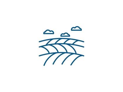 Lote compuesto por 55 fincas rústicas en Paraje La Rosa, La Oliva - Fuerteventura, (Las Palmas). FR desde la 31401 hasta 31455, RP  Pto Rosario nº 1