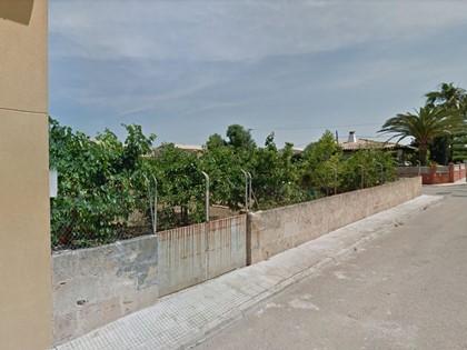 Parcela urbana en MarratxÍ (Islas Baleares). FR 4471 RP Palma de Mallorca 5